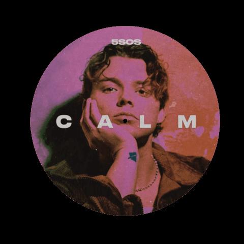 √CALM (Ltd. Picture Disc with Ashton Remix Track) von 5 Seconds of Summer - LP jetzt im 5 Seconds Of Summer Shop