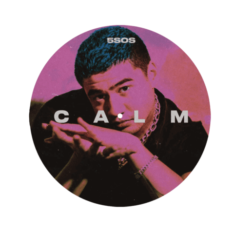 CALM (Ltd. Picture Disc with Calum Remix Track) von 5 Seconds of Summer - 1LP jetzt im 5 Seconds Of Summer Shop